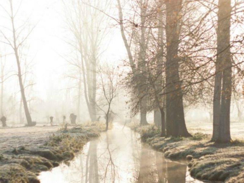 Canaux sous la brume