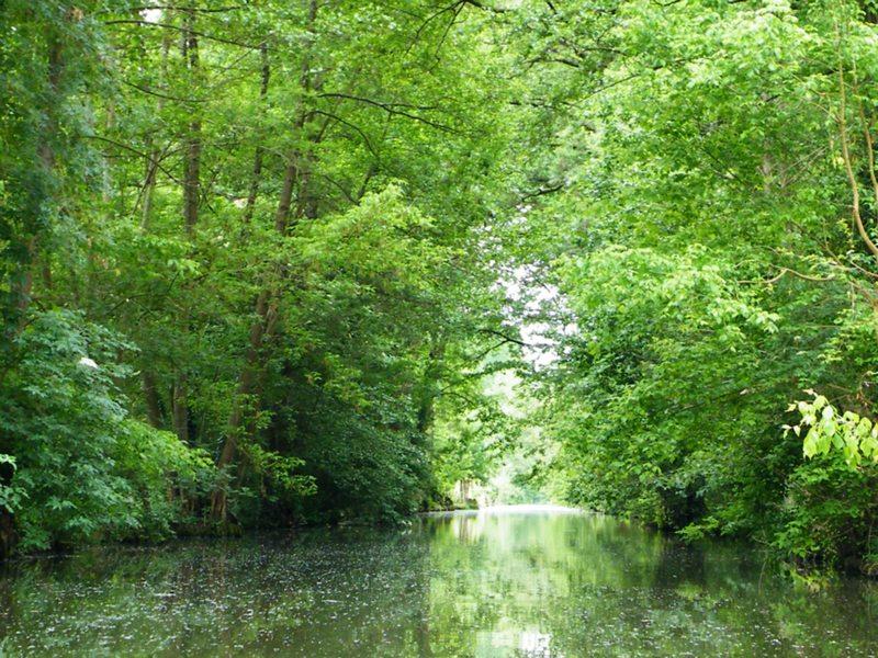 Canaux dans le Marais Poitevin