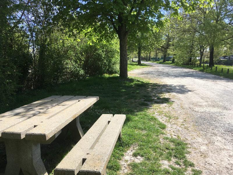 Table de pique nique et le chemin