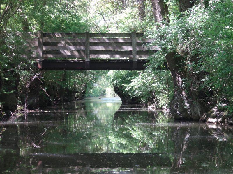 Pont et canard
