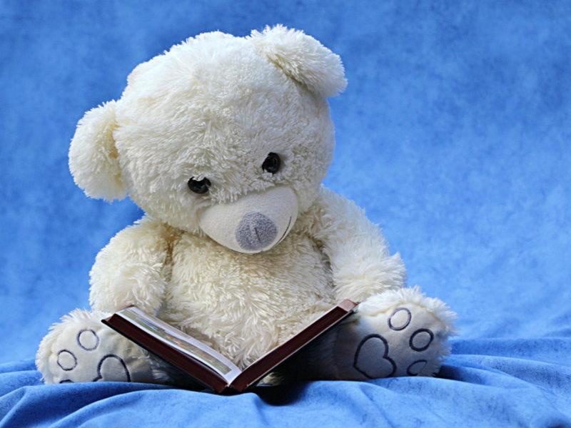 jouet-ours-livre-lecture