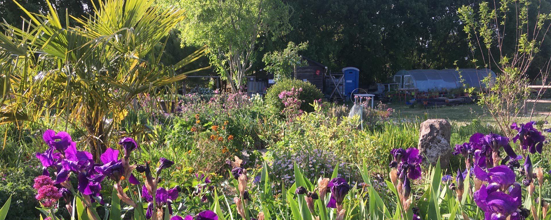 jardin-en-folie-andillyotamp-c-aspect-ratio-2000-800